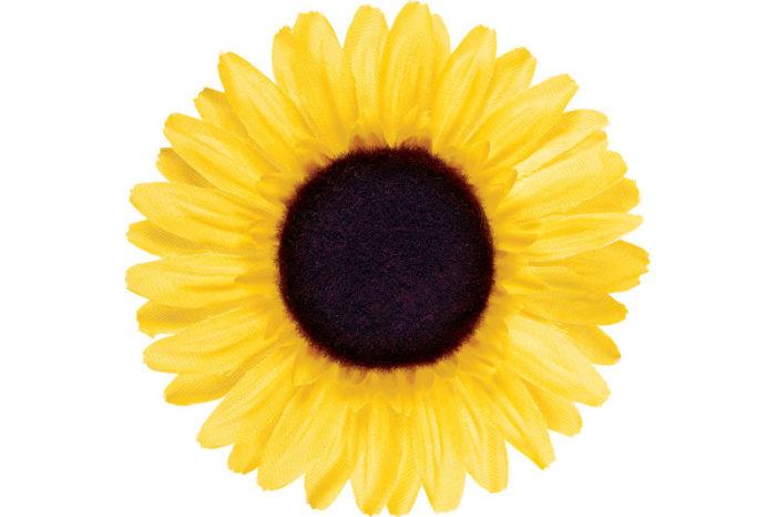 Lenksukaunistus Sunflower